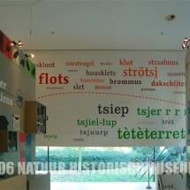 Mus-2006